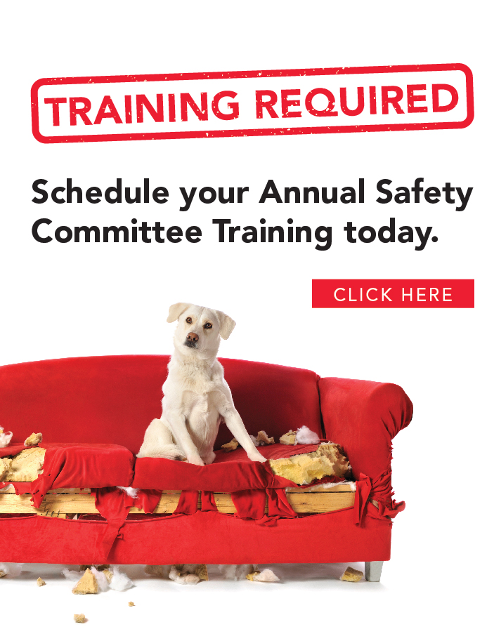 CM Regent Safety Committee Training